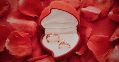 Ringkissen Hochzeit – darauf sollten Sie beim Kauf achten
